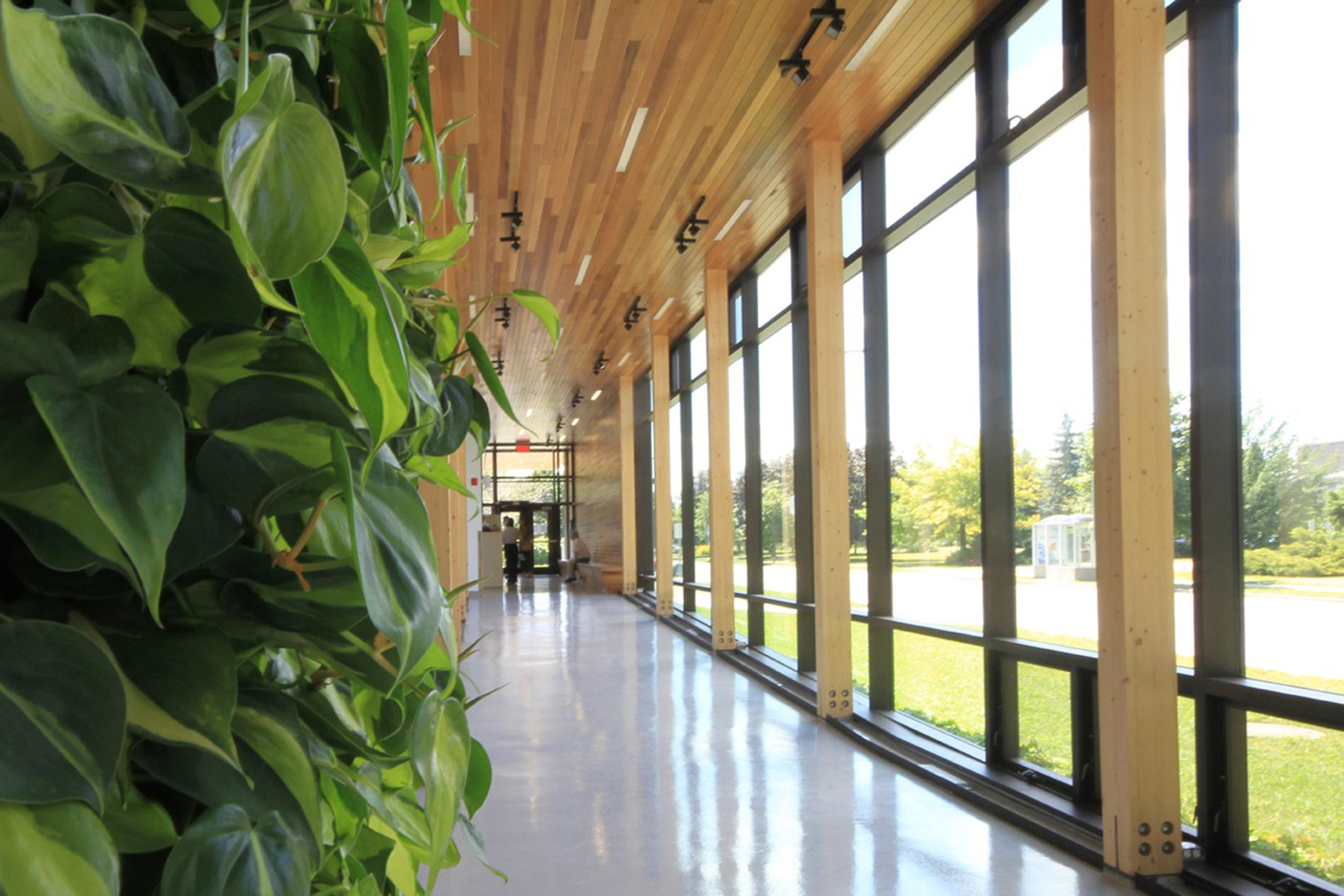 Pavillon horticole écoresponsable – ITA Campus de St-Hyacinthe Cecobois 3